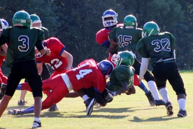 米アメフト選手の99%が脳障害 米国最大人気スポーツに再び衝撃
