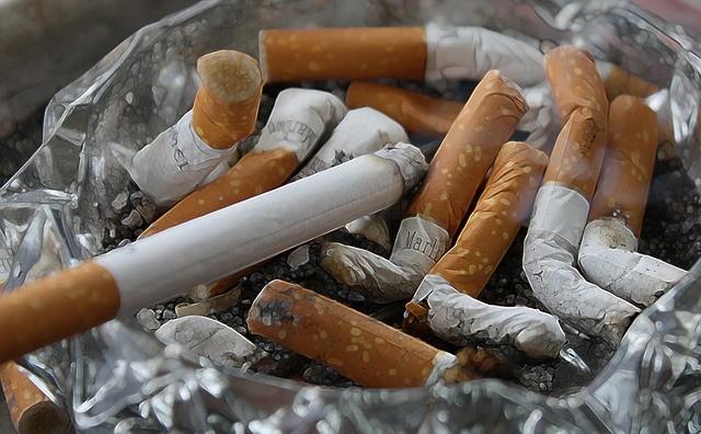 三次喫煙の健康被害をマウスで確認 4か月で糖尿病リスクが上昇