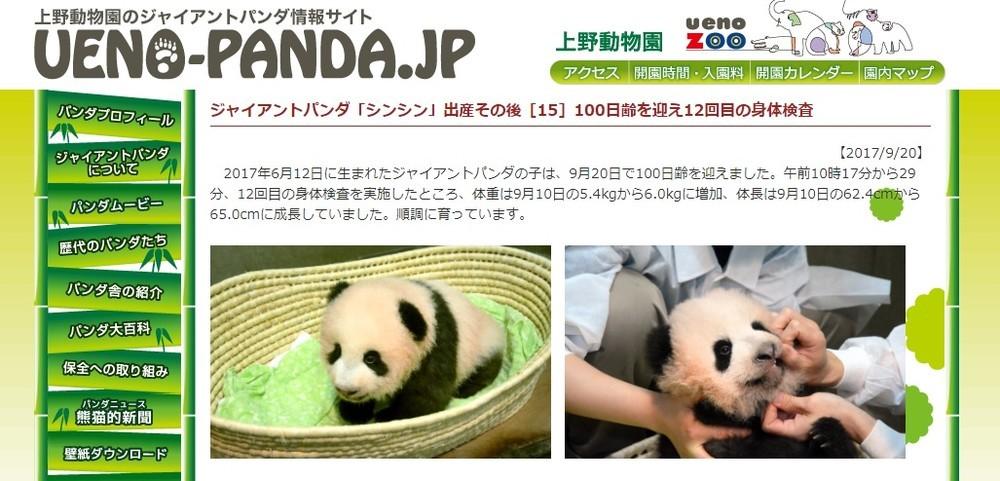 赤ちゃんパンダ名、「ピンクピン太郎」落選 「心の底から残念」「激推ししてた...」