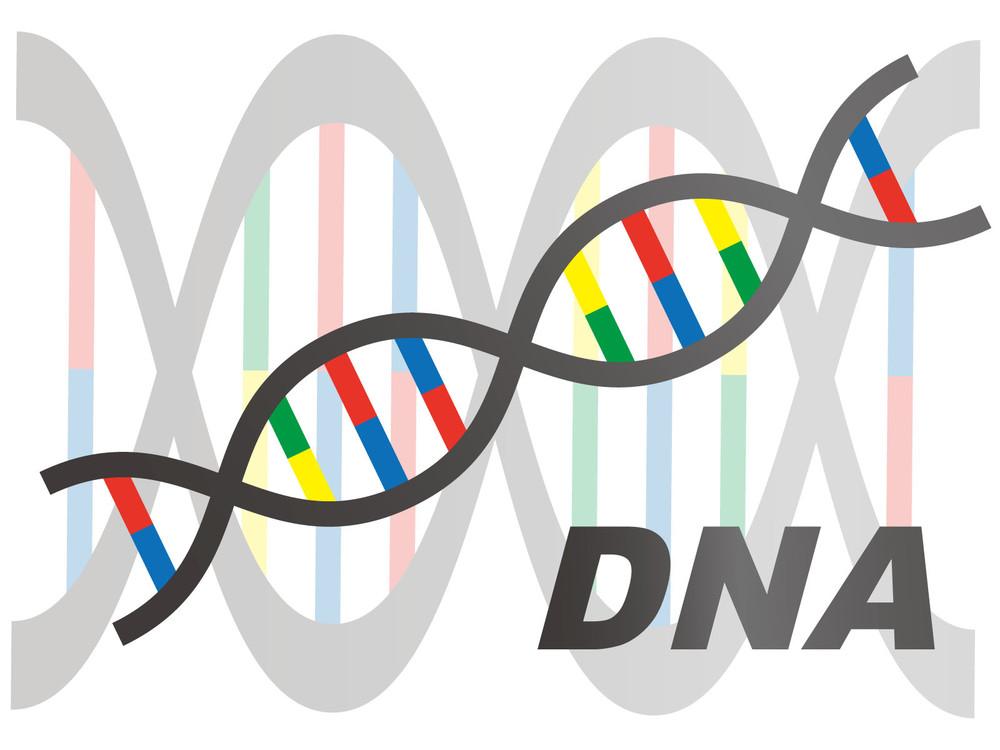 がんが治る時代もうすぐかも 実用間近「ゲノム編集」の最新技術