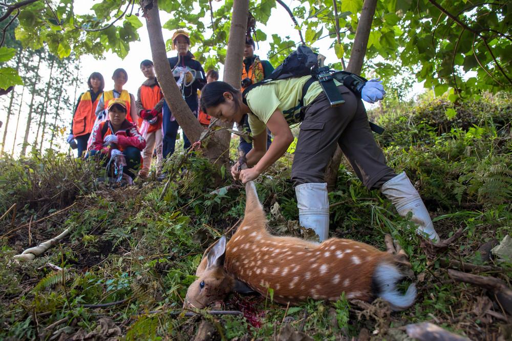 学生狩猟サークルがシカ肉ソーセージ クラウドファンディングで資金集め