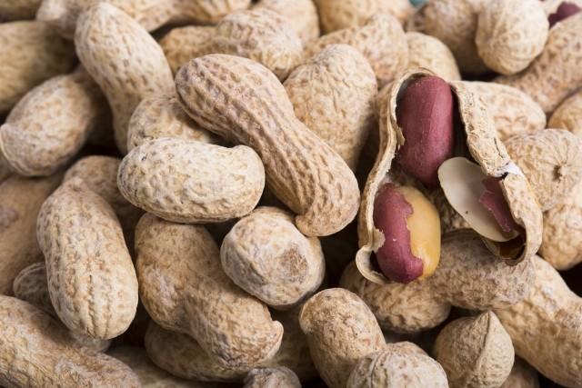 ピーナッツは薄皮ごと食べると健康長寿 お汁粉・鍋・生落花生...美味しいレシピ