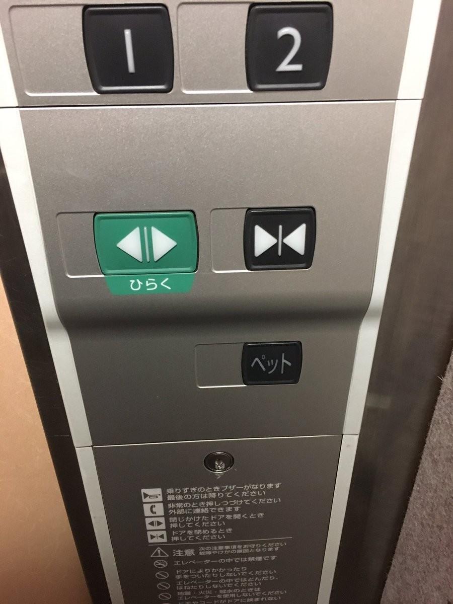 エレベーターの「ペットボタン」、知ってる? 導入の狙いや普及度、メーカーに聞くと...