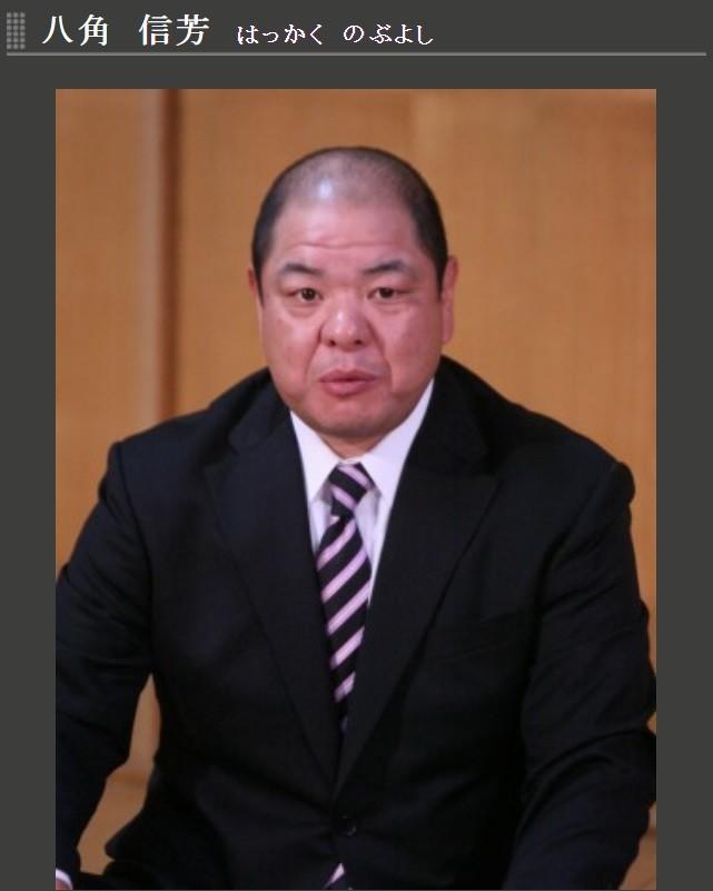 相撲協会理事長、八角の続投当然に「ズレてるな」 フィフィ、相撲記者大見氏・横野氏に猛反論