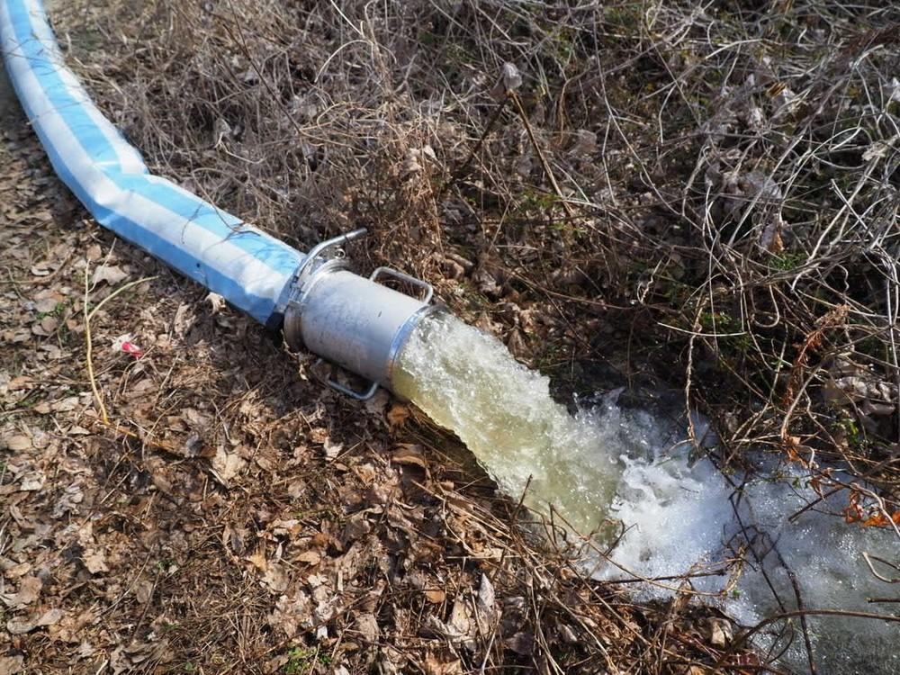 ポンプで抜き出した池の水は、公園内の草地に流し出された(同)