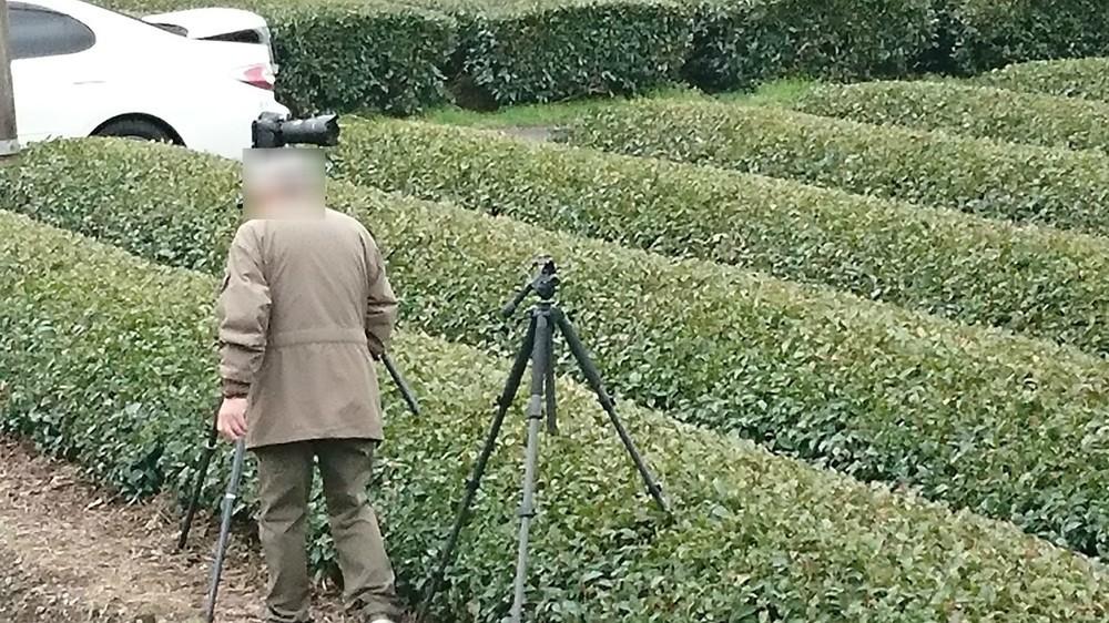「茶畑に三脚立てる」証拠写真 撮り鉄が撮り鉄を怒りの告発「何も感じないのか?」