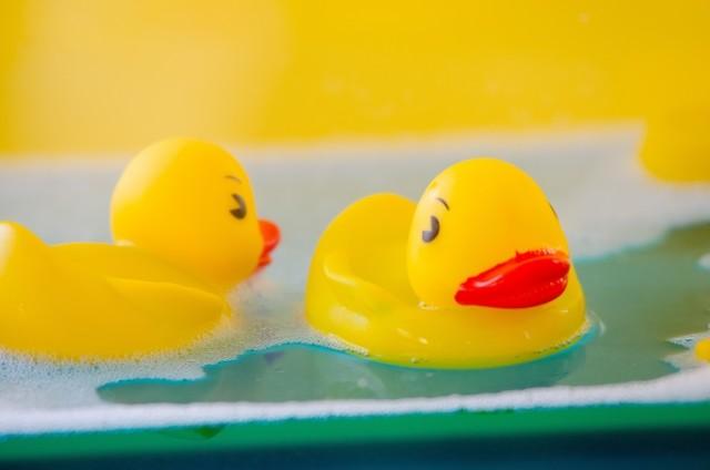 アヒルのおもちゃが「くしゃみ」誘発? 温泉施設が「客の指摘」を徹底検証したワケ
