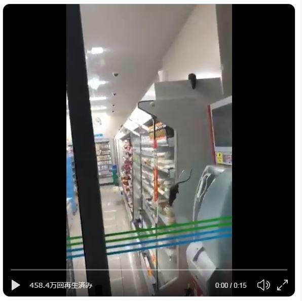 ファミマ店舗でネズミがウジャウジャ 動画にネット騒然....店舗は休止に