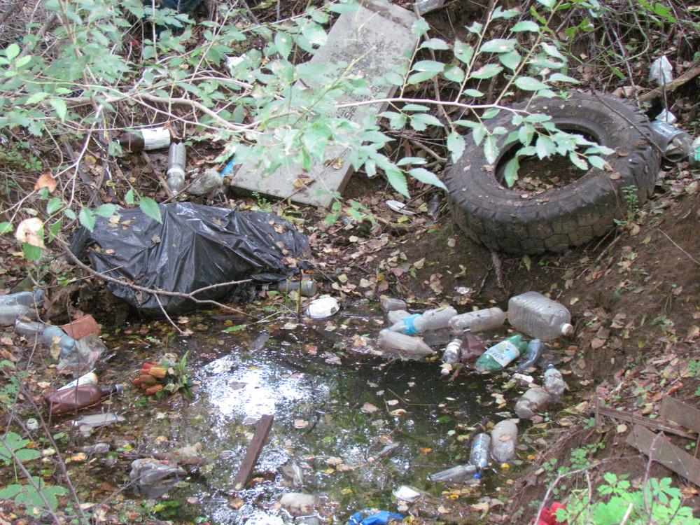 シベリアに眠る父の埋葬地は、ゴミ捨て場と化していた【71年目の死亡通知】(上)
