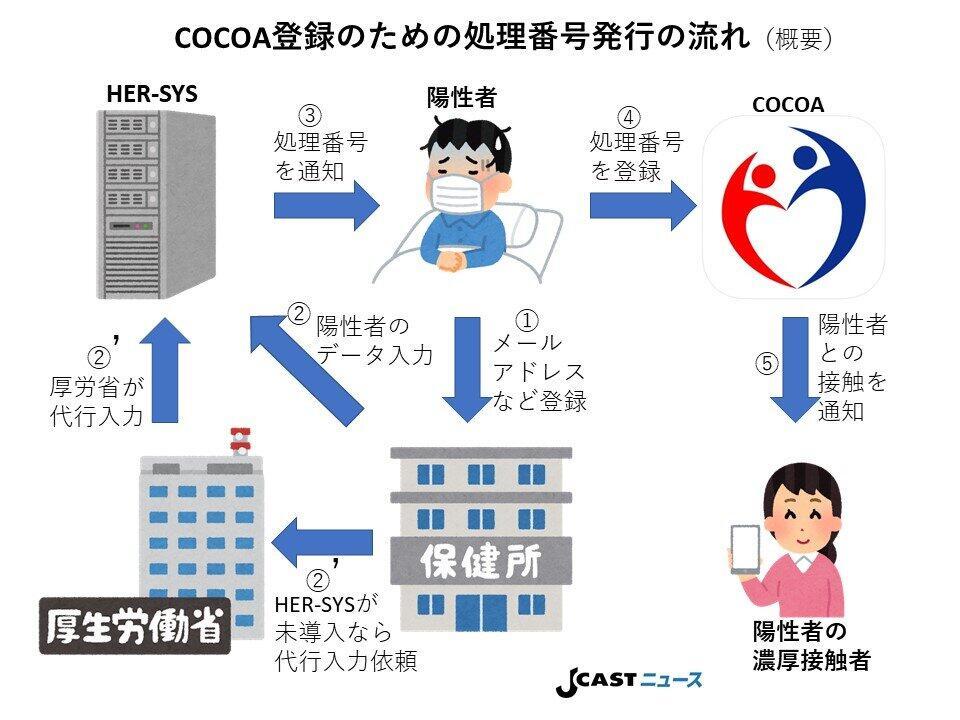 COCOAに「陽性」と登録するための「処理番号」発行の流れ