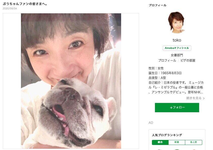 愛犬の死を報告