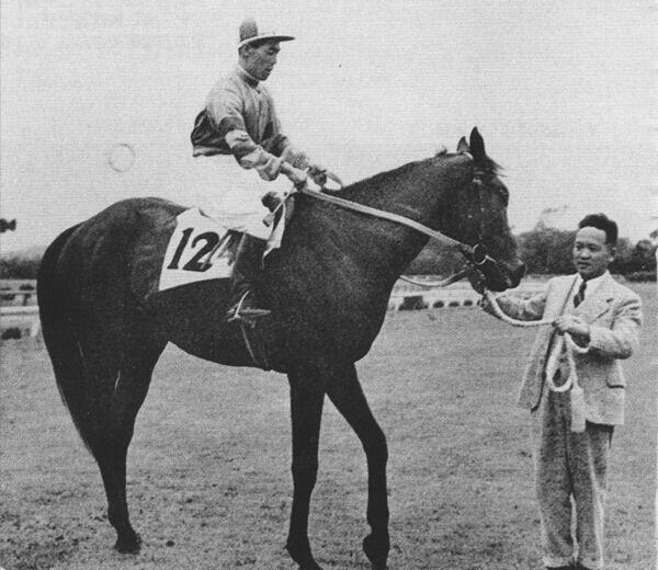 コントレイルは果たして...「三冠馬」たちのその後 大記録の達成もあれば、苦戦の後半生も