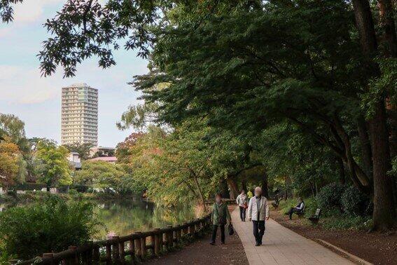 団地近くにある石神井公園。散歩に最適だ