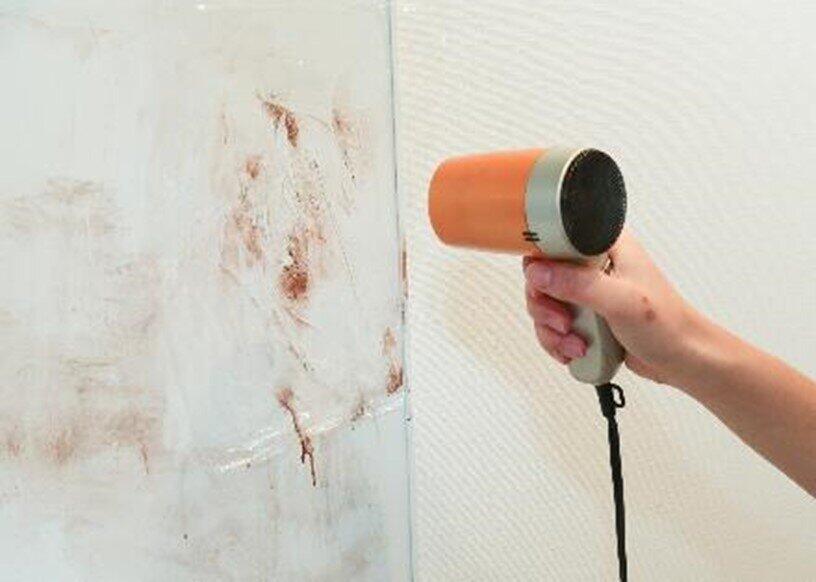 壁にはラップをして温風をあてる