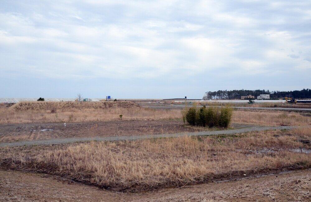 「伝承館」のすぐ外側は、広大な空き地が広がる。遠くに防潮堤が見えた