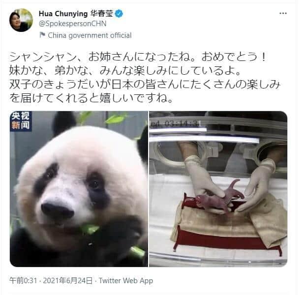 シンシン出産に中国報道官が祝福 「親日アピール」も過去のツイートは...