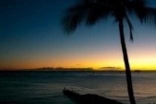 新入社員よ、アロ~ハ~ 「入社式はハワイで」のアノ会社