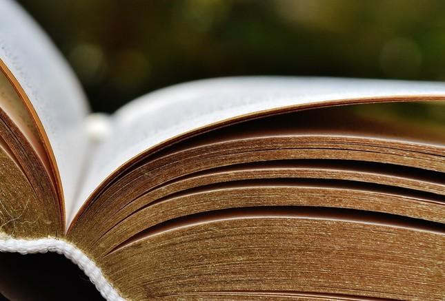 へそくり、どの本に隠したんだっけ