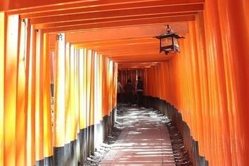 初詣、外国人も触れる日本文化 人気があるのはこんなスポット
