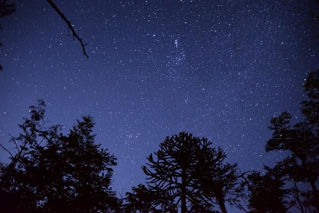 星を見れば満足とは安上がりな