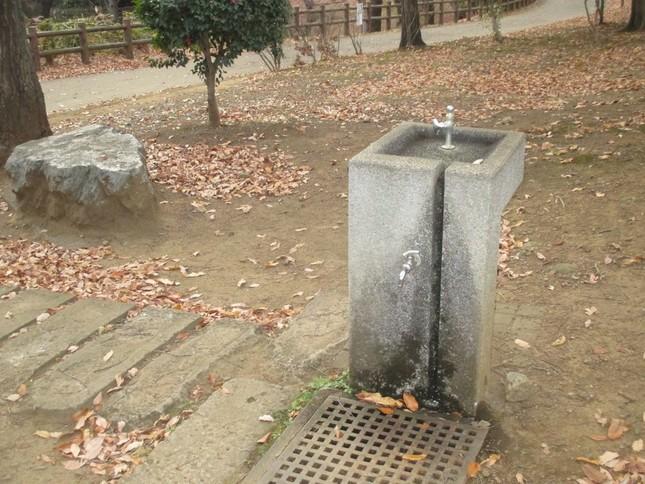 水道事業が民営化されれば、今は無料で飲める公園の水道はどうなるのだろうか。