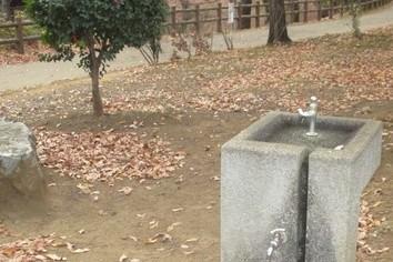 その71 水道の民営化「こんなものいらない!?」(岩城元)
