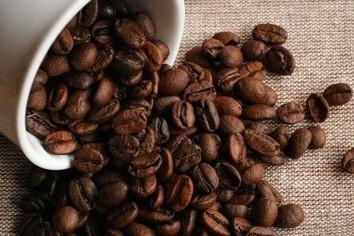 1杯8000円超! 世界で一番高いコーヒーのお味で「ゾッ」としてみる?(井津川倫子)
