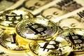 ビットコイン価格が急上昇! 「復活」の原因を探ると......(ひろぴー)