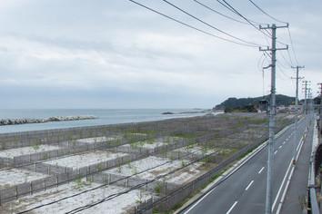 【IEEIだより】福島レポート 「オプトアウトの4条件」 災害と医学研究 災害時の情報収集と法律・ガイドライン(2-2)