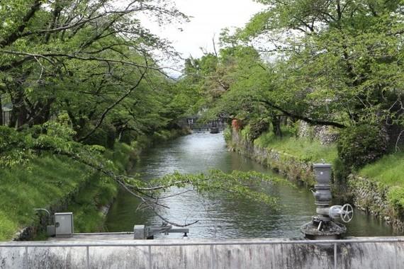 6月13日は太宰治が玉川上水に入水した日だった(写真は、玉川上水 羽村取水堰)