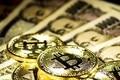 仮想通貨の新たな資金調達方法 誰でも買える「IEO」とはなんだ!?