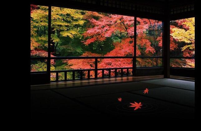 ゆっくり静かな時間が流れる(写真は、京都市左京区・瑠璃光院のホームページより)