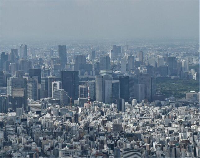 コロナ禍で東京圏の住宅地価に異変が……(写真は、高層ビルが建ち並ぶ東京の街)