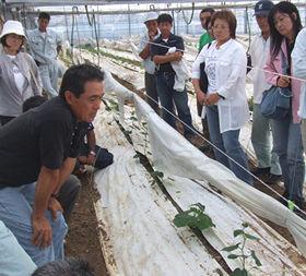 勉強会に参加する沖縄の農家の人たち
