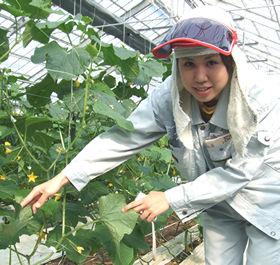 「いつかは自分で農業をやりたい」というかなちゃん