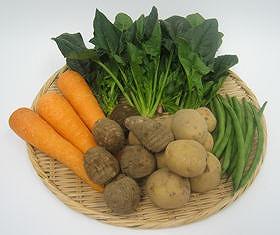 三輪の提唱する「土ごと発酵」で作られた「元気野菜」たち。見栄えは普通だけど、味には自信がある