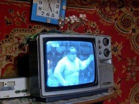 モンゴルのテレビでも大相撲中継が見られる。画面はモンゴル出身の横綱朝青龍