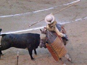 仕留めるまで3段階に分けて牛を・・・