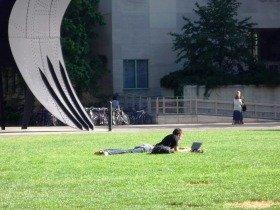 米マサチューセッツ工科大学のキャンパス風景。自由な雰囲気がいいです