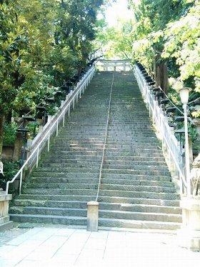 出世の階段、登るべき?