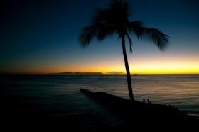 ハワイでやります