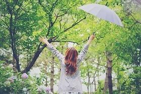 傘にこだわって梅雨を楽しく乗り切る
