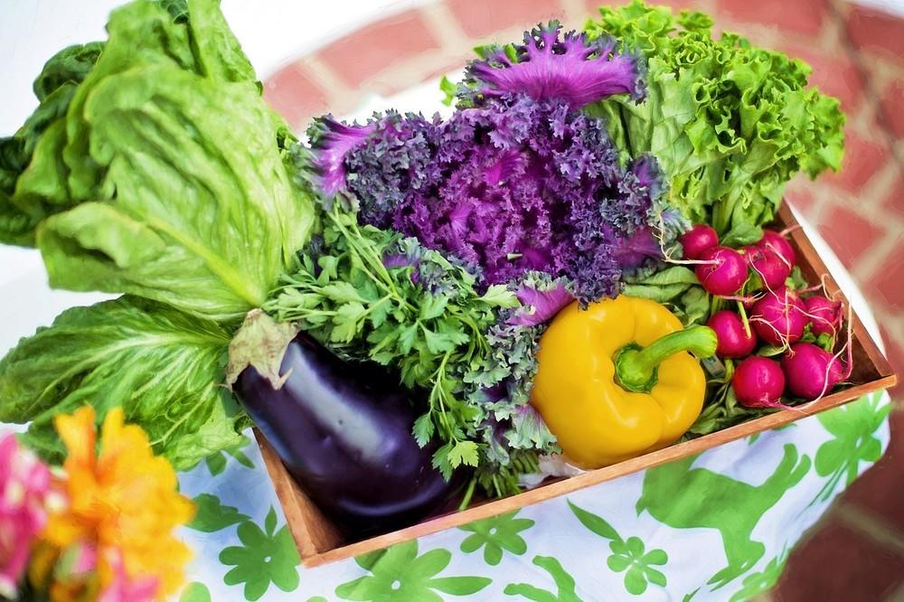 心のチェック、「食物」も大切 「野菜」処方の医師に意を強く