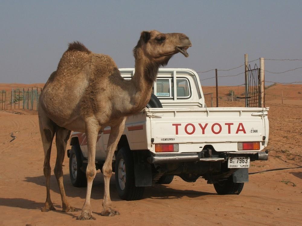 世界で活躍するトヨタ車(記事とは直接関係ありません)