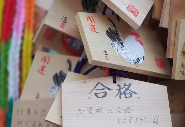 奨学金、大学生の5割 「年収1000万円」家庭でも11.0%が受給
