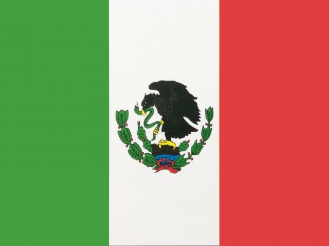FX「くりっく365」メキシコ・ペソを上場 10月末