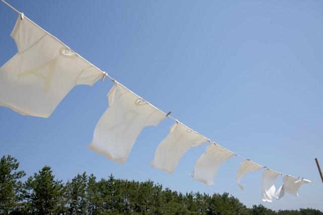 【IEEIだより】福島レポート 復興のカタチ 日々を暮らし続ける「力」のスゴさ(越智小枝)