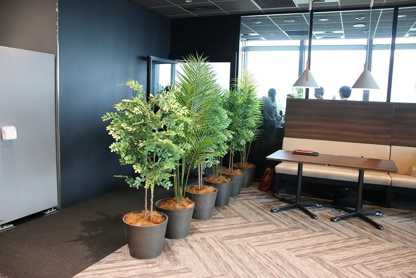 緑の植木の奥が「おひとり様」用のコンストレーションスペース