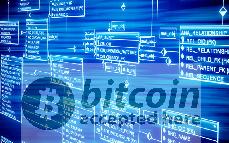 ブロックチェーンが「ネット誕生以来のイノベーション」といわれる理由(気になるビジネス本)