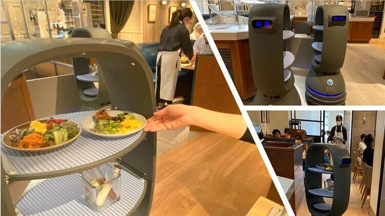 「THE GALLEY SEAFOOD & GRILL by MIKASA KAIKANに、「コロナ対策」で導入された「自動搬送ロボット」